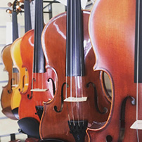 Violins on display at Presto Music