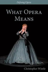 What Opera Means: Categories and Case Studies