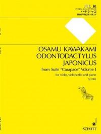 Kawakami, O: Odontodactylus japonicus