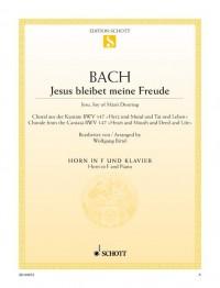Bach, J S: Jesu, Joy of Man's Desiring BWV 147