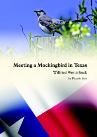 Wilfried Westerlinck: Meeting A Mockingbird In Texas