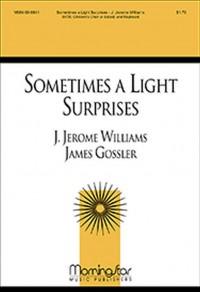 J. Jerome Williams: Sometimes a Light Surprises
