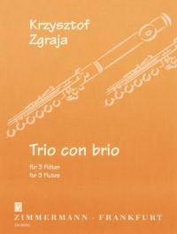 Krysztof Zgraja: Trio con brio