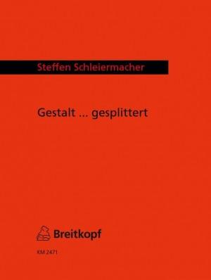 Schleiermacher: Gestalt ... gesplittert