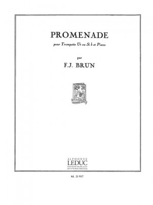 François Julien Brun: Promenade