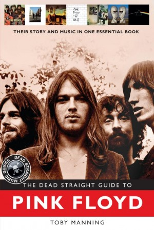 Dead Straight Guide to Pink Floyd, The