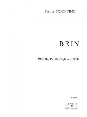 Sciortino: Brin