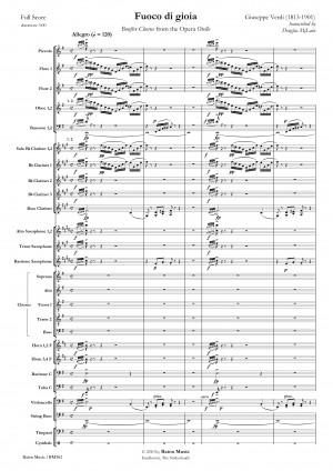 Giuseppe Verdi: Fuoco di Gioia Product Image