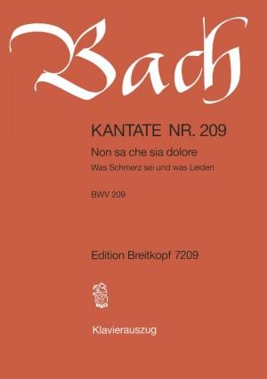 Bach, J S: Non sa che sia dolore BWV 209