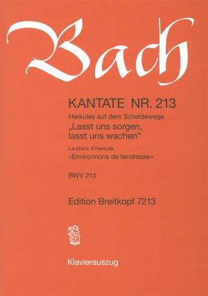 Bach, J S: Lasst uns sorgen, lasst uns wachen BWV 213