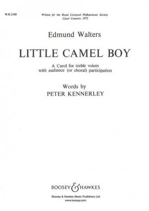 Walters, E: Little Camel Boy
