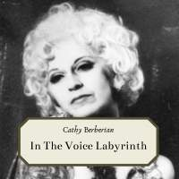 In The Voice Labyrinth