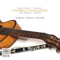 Ensemble Consolazione