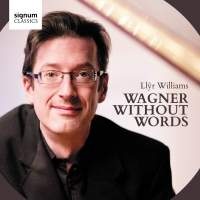 Wagner without Words