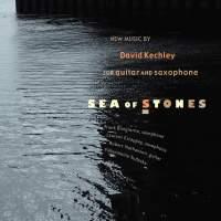David Kechley: Sea of Stones
