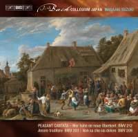 Bach - Secular Cantatas VII