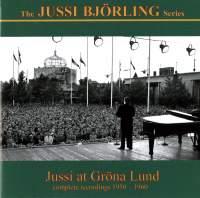 Jussi at Gröna Lund