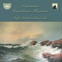 Steffan Biörklund-Jullander: Improvisations, Concert Etudes, Meditations