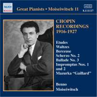 Great Pianists - Moiseiwitsch 11