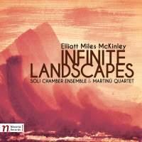 Elliott Miles McKinley: Infinite Landscapes