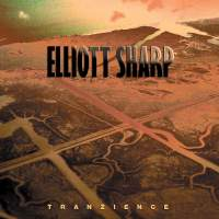 Elliott Sharp: Tranzience