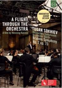 A Flight through the Orchestra
