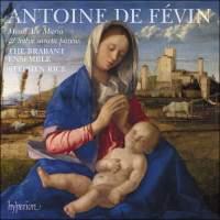 de Févin: Missa Ave Maria & Missa Salve sancta parens