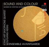 Sound and Colour - Works by Schleiermacher