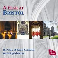 A Year at Bristol