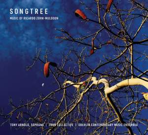 Songtree Product Image