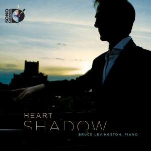 Bruce Levingston: Heart Shadow Product Image