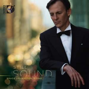 Bruce Levingston: Still Sound Product Image