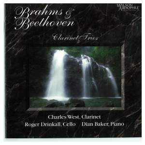 Brahms & Beethoven: Piano Trios Product Image