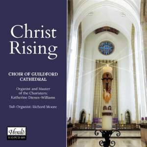 Christ Rising Product Image