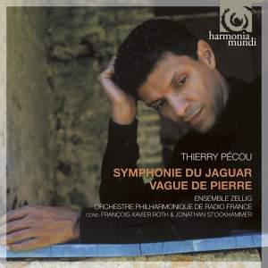 Pécou - Symphonie du jaguar & Vague de Pierre