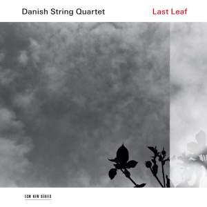 Last Leaf Product Image