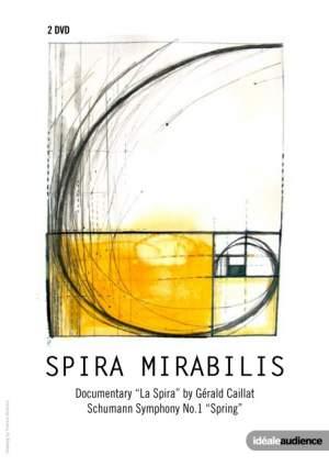 Spira Mirabilis Product Image