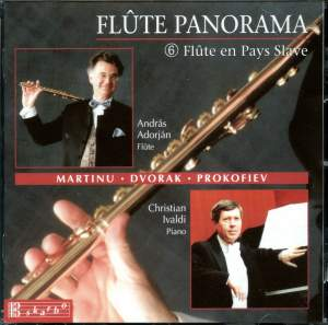 Various Composers: Flute Panorama Vol. 6