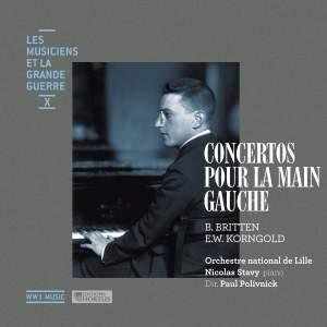 Les Musiciens et la Grande Guerre Vol. 10