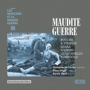 Maudite guerre (Les musiciens et la Grande Guerre, Vol. 22) Product Image