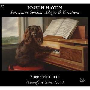 Haydn: Fortepiano Sonatas, Adagio & Variations Product Image