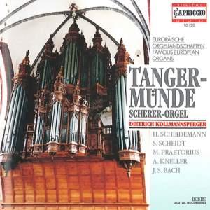 Famous European Organs - Tangermünde (Scherer Organ) Product Image