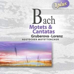 Bach: Motets & Cantatas Product Image