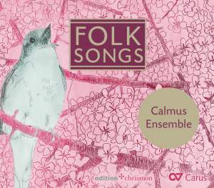 Folk Songs - From Ireland To England To Scandinavia
