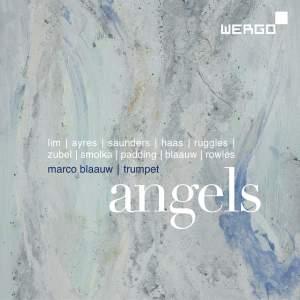 Marco Blaauw: Angels