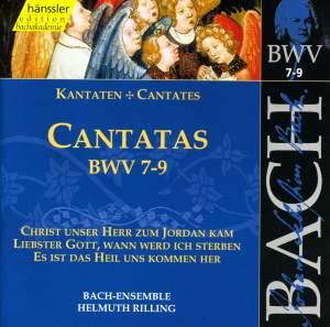 Bach - Cantatas Vol. 3