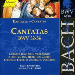 Bach - Cantatas Vol. 11