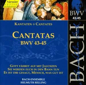 Bach - Cantatas Vol. 15
