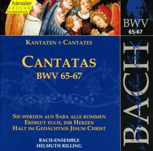 Bach - Cantatas Vol. 21