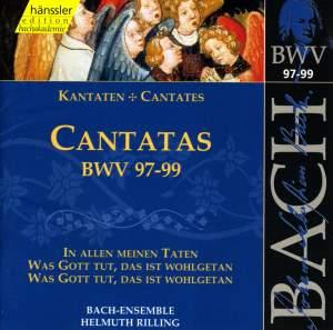 Bach - Cantatas Vol. 31